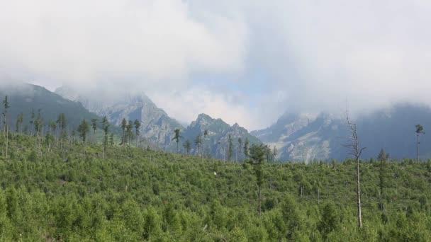Vysoké Tatry (Slovensko) letní ranní pohled