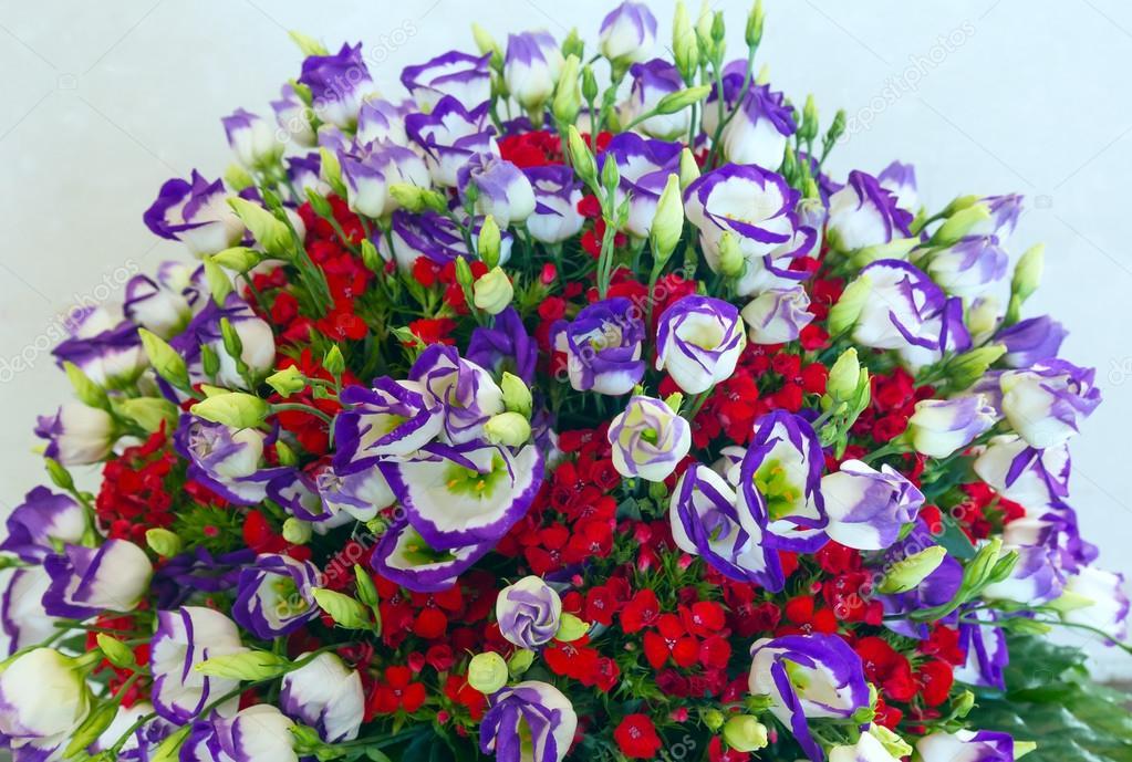 Big wonderful flowers bouquet — Stock Photo © wildman #66159444