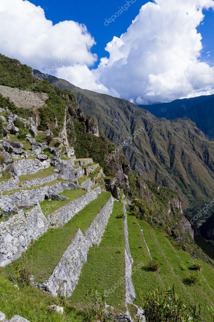 Terrazas De Cultivo Machu Picchu Terrazas De Cultivo En