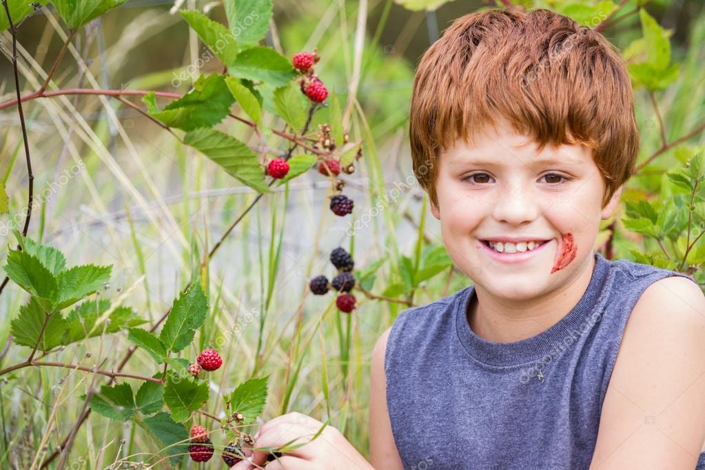 Fresh sweet blackberries