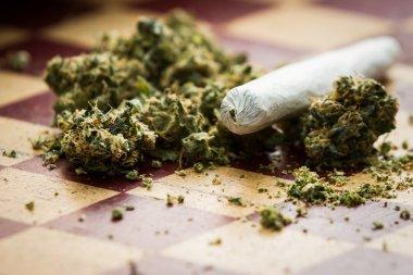Marijuana joint closeup