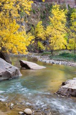 """Картина, постер, плакат, фотообои """"осень на девственной реке постеры природа художники"""", артикул 67843741"""