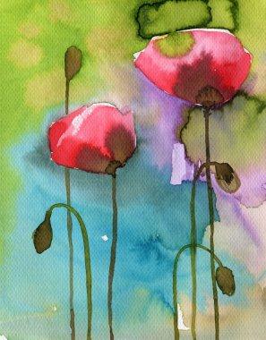 Watercolor flowers, poppy