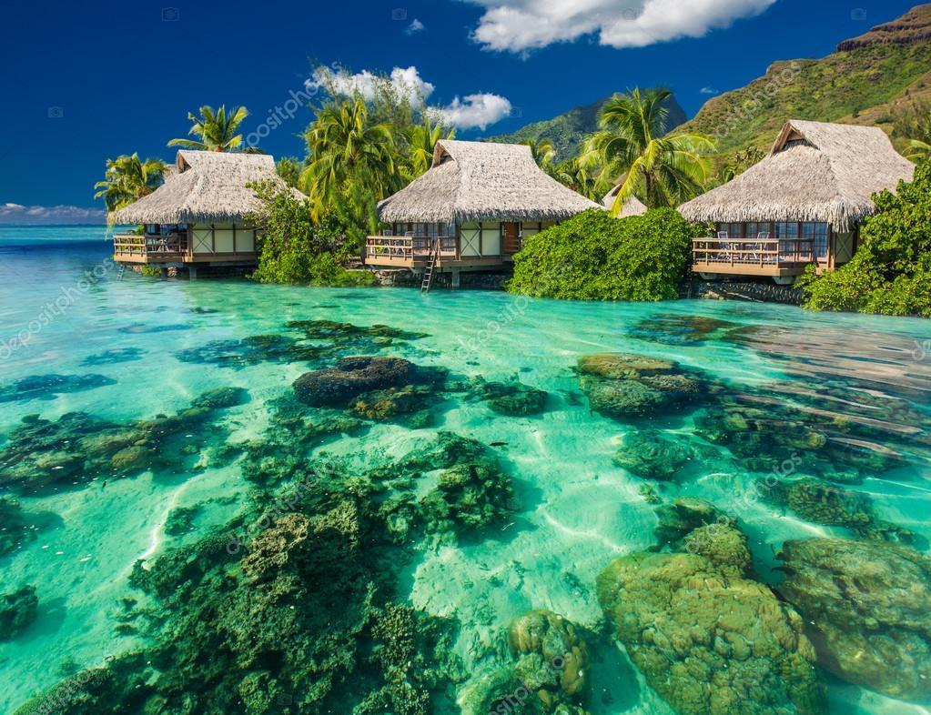 paysage magnifique au dessus et sous l 39 eau d 39 une station baln aire tropicale photographie. Black Bedroom Furniture Sets. Home Design Ideas