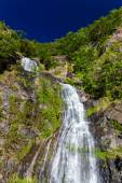 Stony Creek Falls vodopád, Kuranda v Austrálii