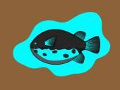 Fényképek Retro Takifugu hal