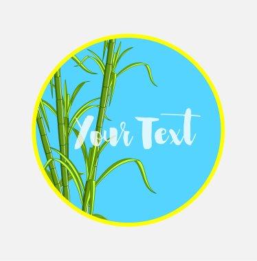 Sugarcanes Vector Banner