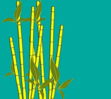 Ecology Sugarcanes Vector