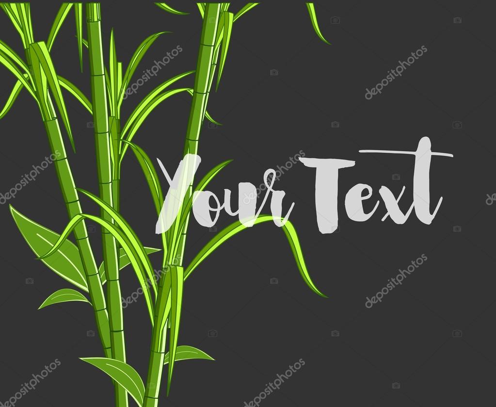 Organic Sugarcanes Vector