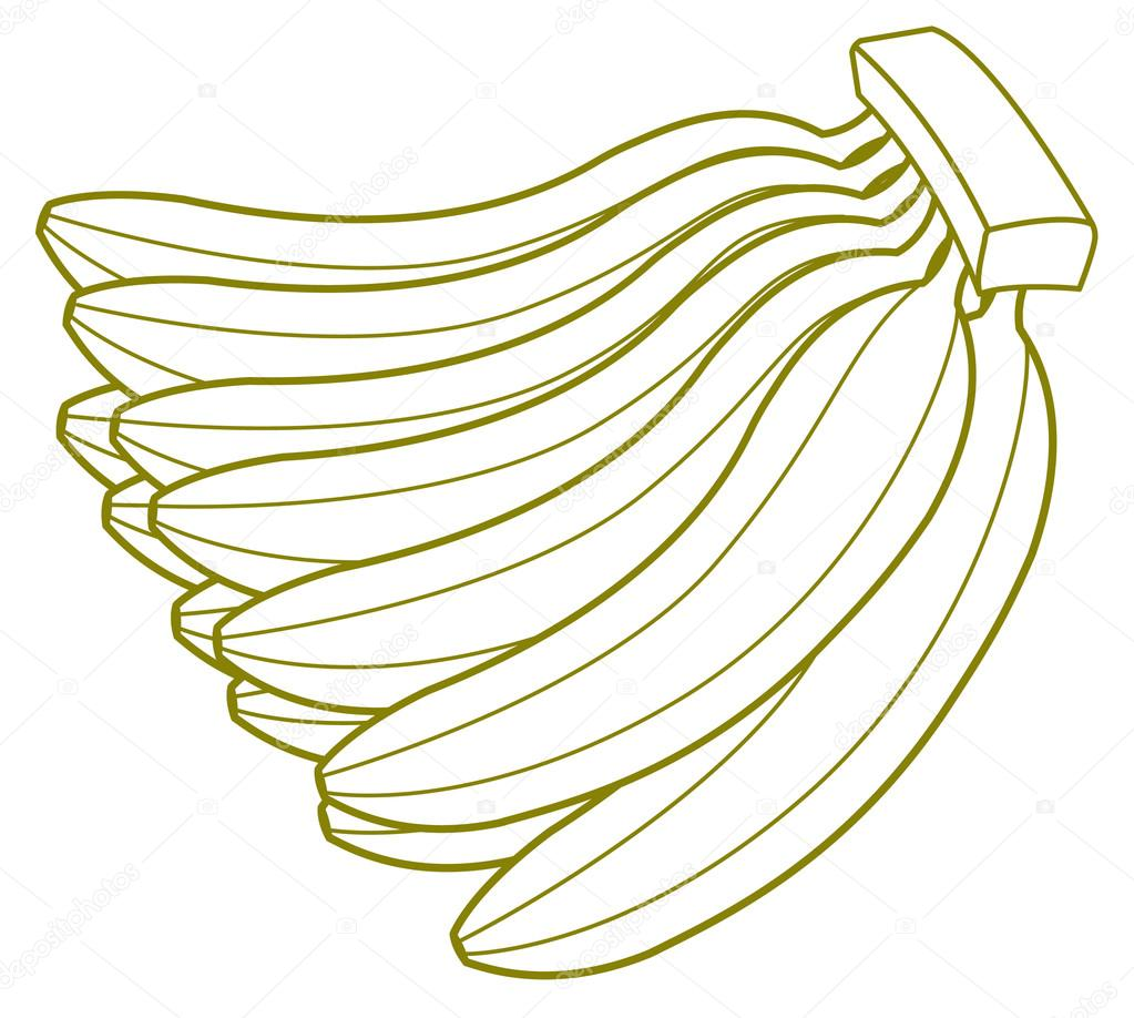 Bunch Of Bananas Drawing Stock Vector