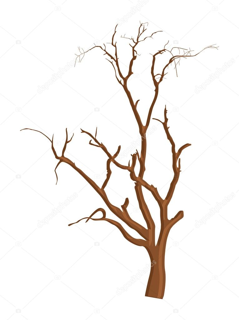 Shape Of Dead Tree Branches Stock Vector C Baavli 57603567
