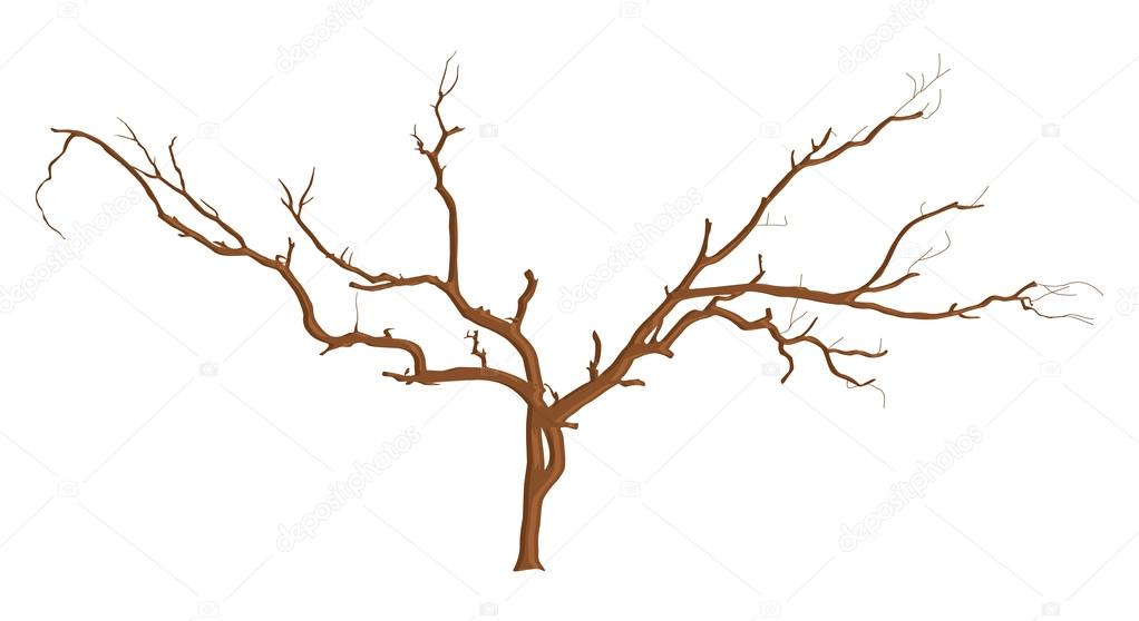Dead Tree Branches Designs Stock Vector C Baavli 57751731