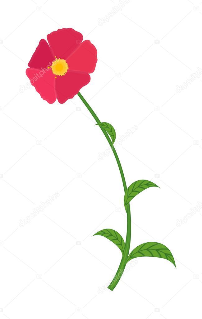 elemento de desenho de flor rosa vetores de stock baavli 57839421