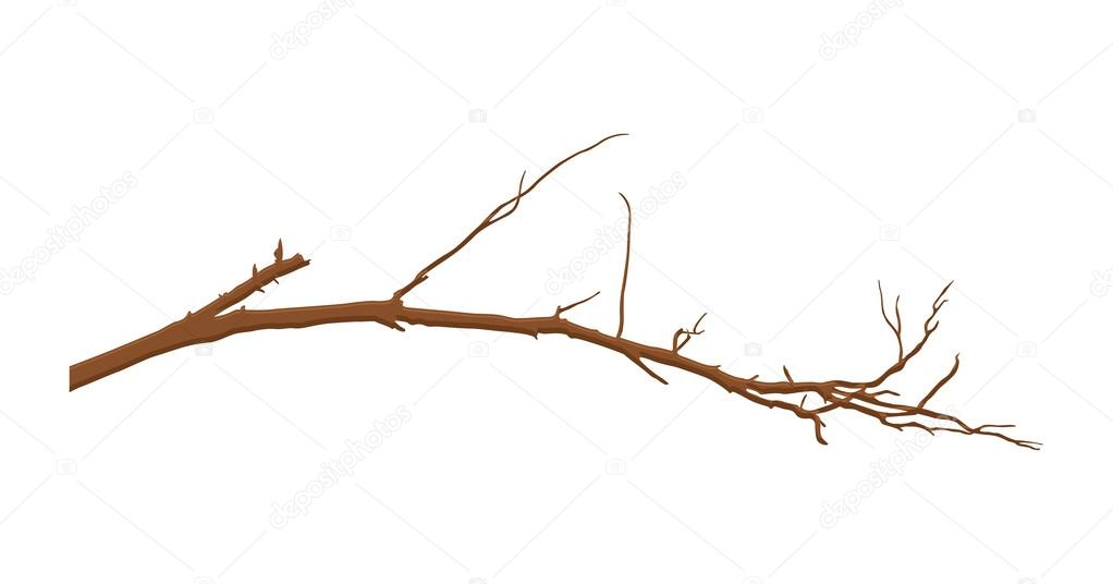 Dry Tree Branch Vector