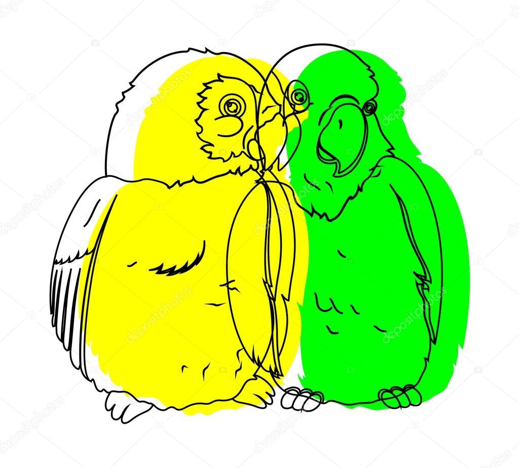 Parrot Birds Drawing Vector Stock Vector C Baavli 62171243