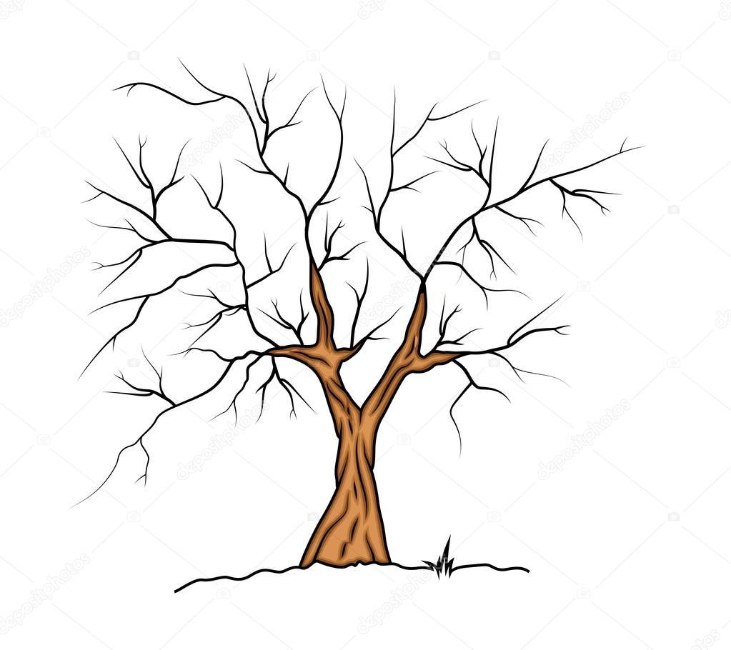 Baavli 64246307 - Dessin arbre nu ...