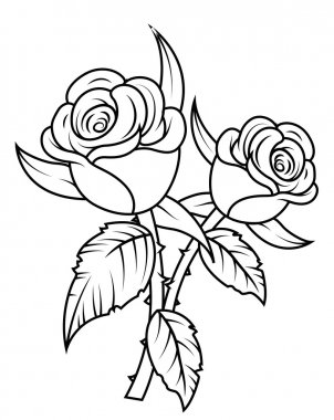 Rose Flowers Clipart