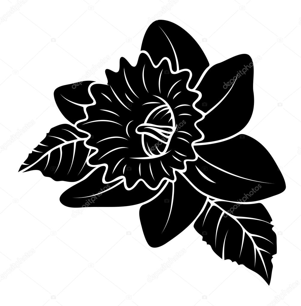 Black Shape Wild Flower Design