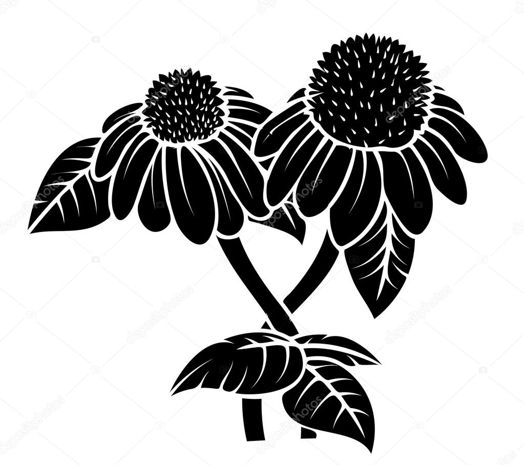 Black Shape Flower Design