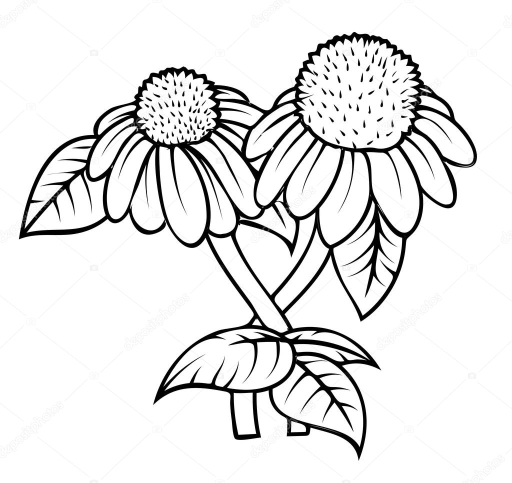 Retro Blossoms Drawing Vector