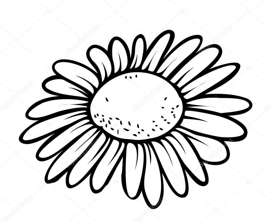 Retro Flower Closeup Drawing