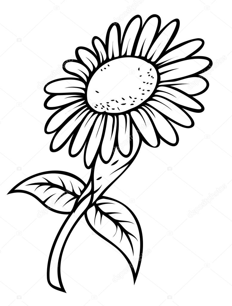 Retro Sunflower Drawing — Stock Vector © baavli #64337921 for Clipart Sunflower Black And White  155sfw