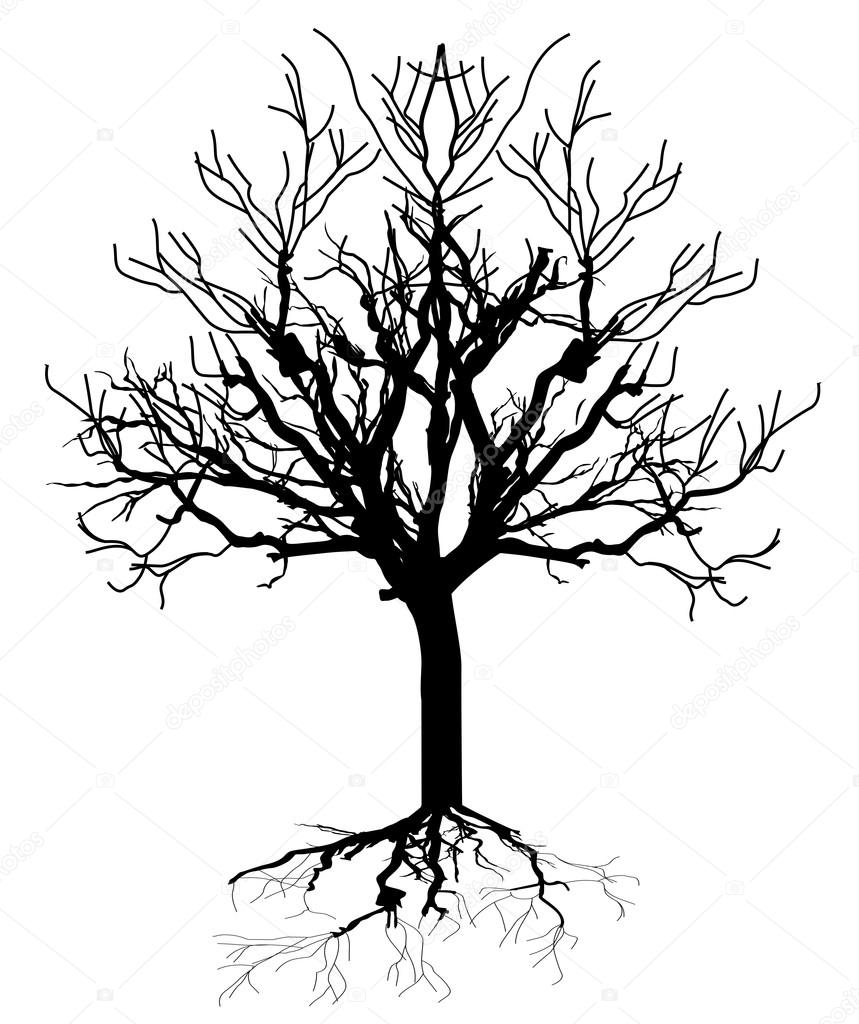 dead tree silhouette stock vector baavli 64423043 rh depositphotos com Vector Dead Tree with Buds dead tree silhouette vector