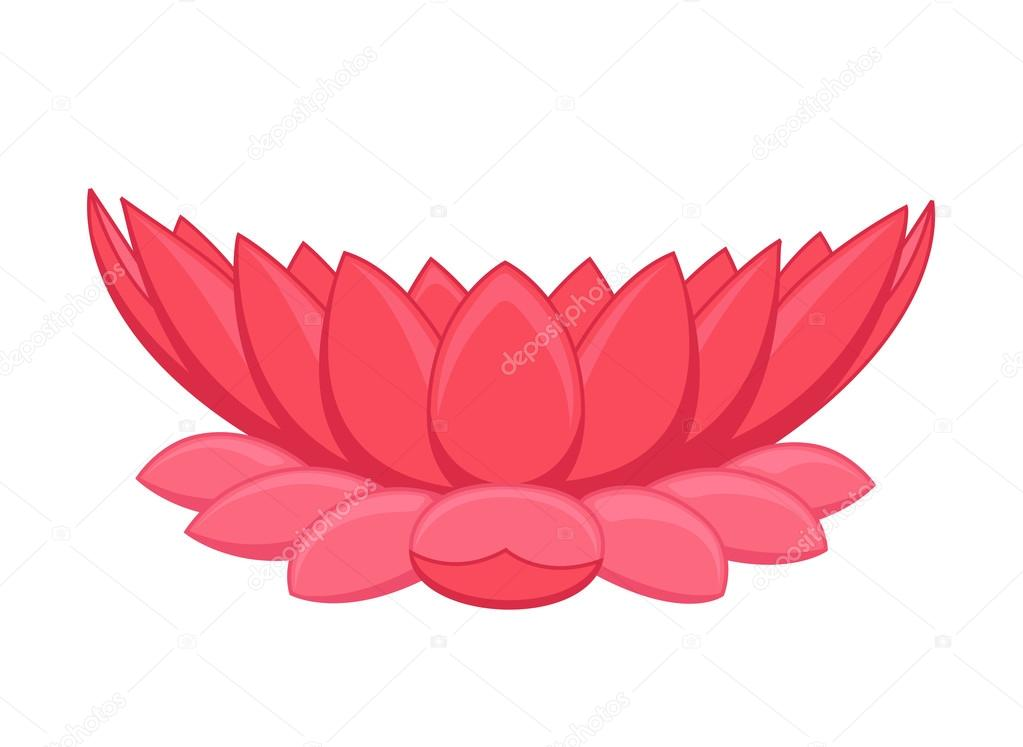 Lotus Flower Illustration Stock Vector Baavli 76713987