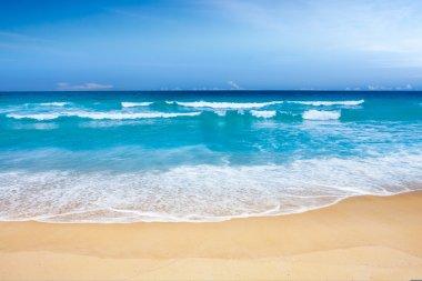 Beautiful Beach Paradise