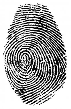 Fingerprint vector illustration