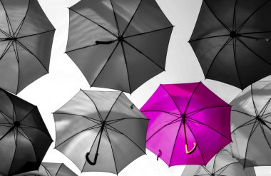 umbrella standing out from the crowd unique concept