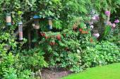 Fotografie Bird feeders in a typical english country garden