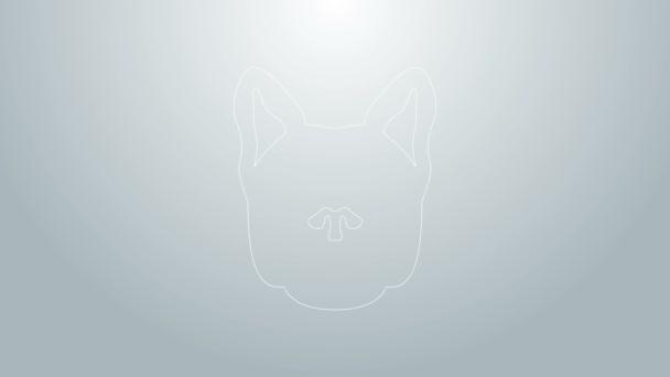 Kék vonal Kutya ikon elszigetelt szürke háttér. 4K Videó mozgás grafikus animáció