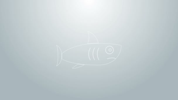 Blue line Shark icon isolated on grey background. 4K Video motion graphic animation