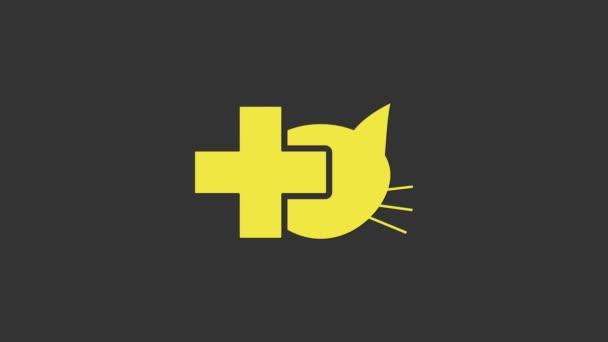 Gelbes Symbol der Tierklinik isoliert auf grauem Hintergrund. Kreuzung mit tierärztlicher Betreuung für Katzen. Haustier Erste Hilfe Zeichen. 4K Video Motion Grafik Animation