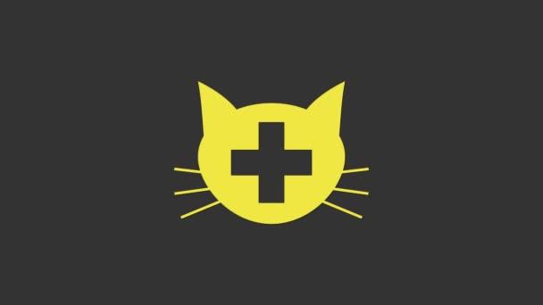 Žlutý symbol veterinární kliniky izolovaný na šedém pozadí. Kříž s kočičí veterinární péčí. Zvířecí znamení první pomoci. Grafická animace pohybu videa 4K