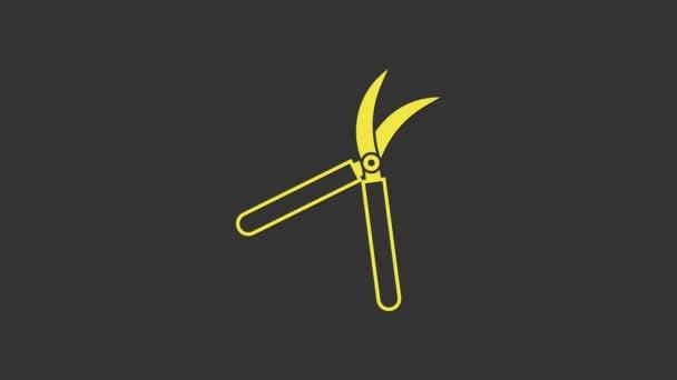 Žluté zahradnické ruční nůžky pro ořezávání ikony izolované na šedém pozadí. Stříhací nůžky s dřevěnou rukojetí. Grafická animace pohybu videa 4K