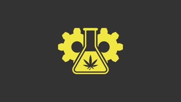Žlutá chemická zkumavka s ikonou marihuany nebo konopných listů izolovaná na šedém pozadí. Výzkumný koncept. Laboratorní koncepce oleje CBD. Grafická animace pohybu videa 4K