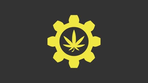 Gelbes chemisches Reagenzglas mit Marihuana oder Cannabisblatt-Symbol auf grauem Hintergrund. Forschungskonzept. Labor-CBD-Ölkonzept. 4K Video Motion Grafik Animation