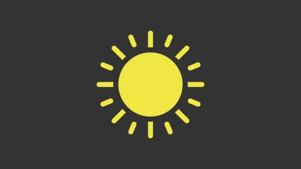 Ikona žlutého slunce izolovaná na šedém pozadí. Grafická animace pohybu videa 4K