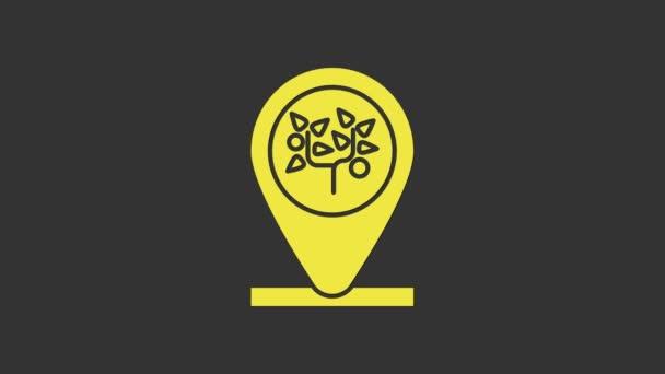 Gelbe Lage und Baumsymbol isoliert auf grauem Hintergrund. 4K Video Motion Grafik Animation