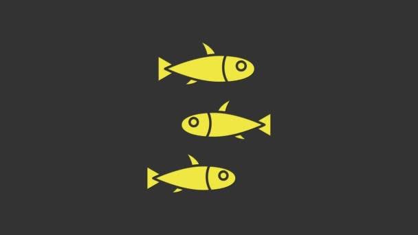 Ikona Žluté ryby izolované na šedém pozadí. Grafická animace pohybu videa 4K