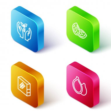Set Isometric line Plant in hand, Seed, Flour pack and Pumpkin seeds icon. Vector icon