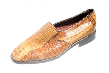 snake leather shoe - illegal endangered species product
