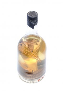 illegal to import souvenir - bottle of snake liquor