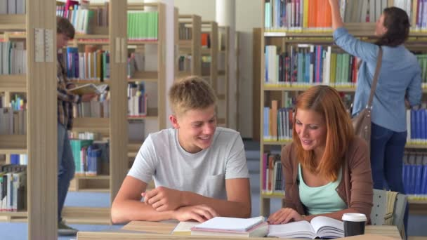 Two students studying together in college library