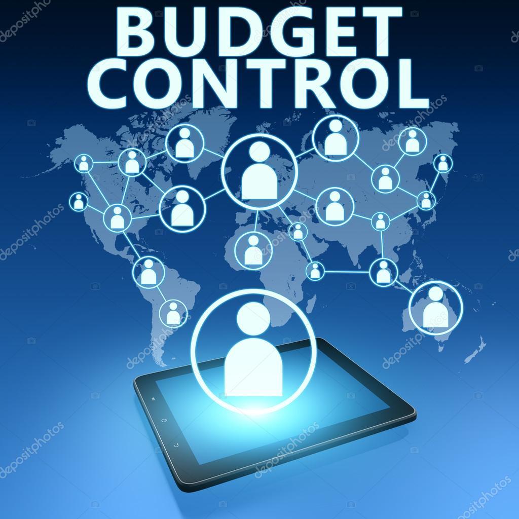 Bütçe kontrolü