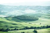 krajina v Toskánsku, Itálie