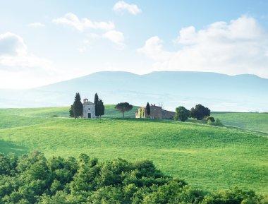 Morning in Tuscany, Italy stock vector