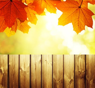 Fence in autumn forest stock vector